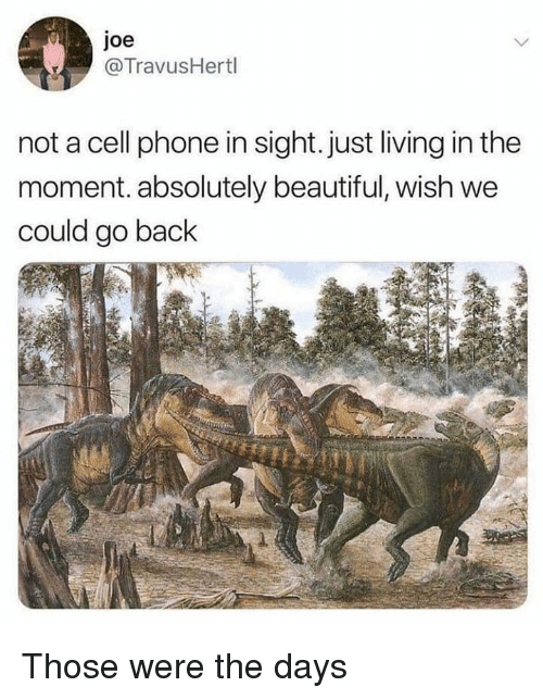 Beautiful, Memes, and Phone: joe  @TravusHertl  not a cell phone in sight. just living in the  moment. absolutely beautiful, wish we  could go back Those were the days