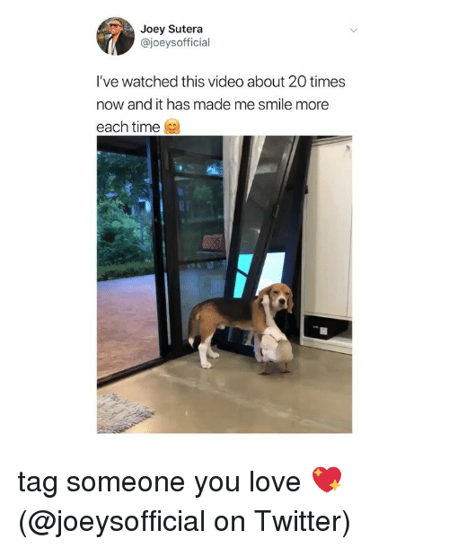 Love, Memes, and Twitter: Joey Sutera  @joeysofficial  I've watched this video about 20 times  now and it has made me smile more  each time tag someone you love 💖 (@joeysofficial on Twitter)
