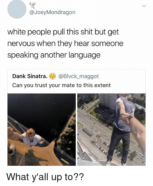 Dank, Memes, and Shit: @JoeyMondragon  white people pull this shit but get  nervous when they hear someone  speaking another language  Dank Sinatra.墜) @Blvck, maggot  Can you trust vour mate to this extent What y'all up to??