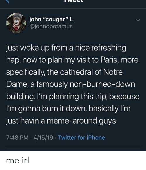 """Iphone, Meme, and Twitter: john """"cougar"""" L  @johnopotamus  just woke up from a nice refreshing  nap.now to plan my visit to Paris, more  specifically, the cathedral of Notre  Dame, a famously non-burned-down  building.lI'm planning this trip, because  I'm gonna burn it down. basically I'm  just havin a meme-around guys  7:48 PM 4/15/19 Twitter for iPhone me irl"""