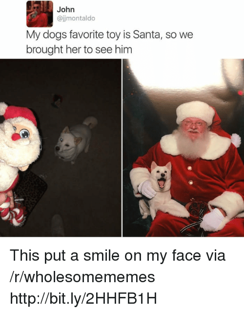 Dogs, Http, and Santa: John  @jjmontaldo  My dogs favorite toy is Santa, so we  brought her to see him This put a smile on my face via /r/wholesomememes http://bit.ly/2HHFB1H