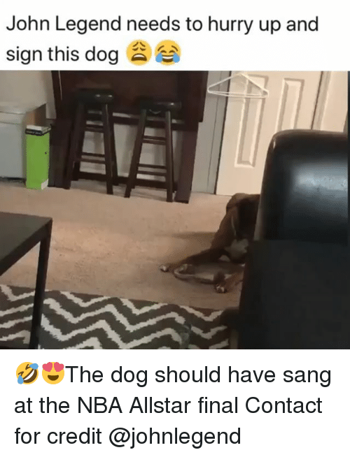 John Legend, Memes, and Nba: John Legend needs to hurry up and  sign this dog 🤣😍The dog should have sang at the NBA Allstar final Contact for credit @johnlegend