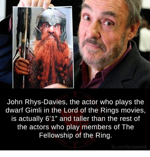 john rhys davies the actor who plays the dwarf gimli in 4835026 ✅ 25 best memes about lord of the ring lord of the ring memes