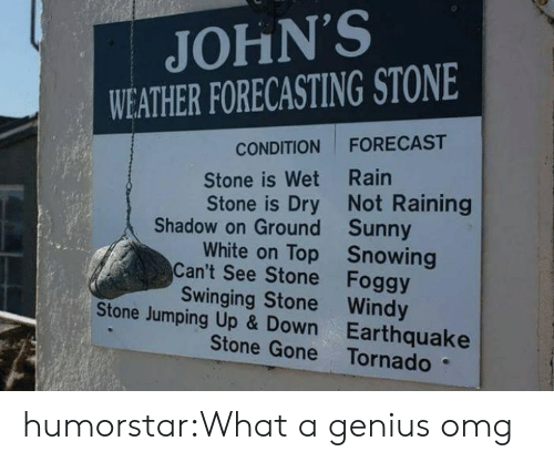 Omg, Tumblr, and Blog: JOHN'S  WEATHER FORECASTING STONE  FORECAST  CONDITION  Stone is Wet Rain  Stone is Dry Not Raining  Shadow on Ground Sunny  White on Top Snowing  Can't See Stone Foggy  Swinging Stone Windy  Stone Jumping Up & Down Earthquake  Stone Gone Tornado humorstar:What a genius omg