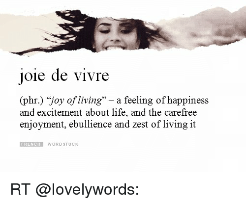 joie de vivre phr joy of living a feeling of happiness and