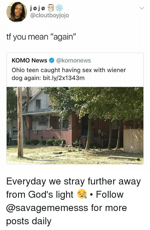 """Memes, News, and Sex: jojo  @cloutboyjojo  tf you mean """"again""""  KOMO News@komonews  Ohio teen caught having sex with wiener  dog again: bit.ly/2x1343m Everyday we stray further away from God's light 😪 • Follow @savagememesss for more posts daily"""