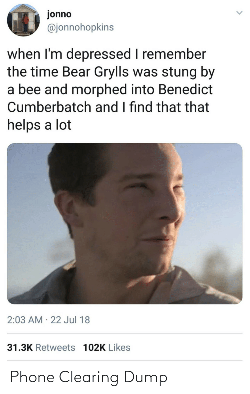 Phone, Bear, and Time: jonno  @jonnohopkins  when I'm depressed I remember  the time Bear Grylls was stung by  a bee and morphed into Benedict  Cumberbatch and I find that that  helps a lot  2:03 AM · 22 Jul 18  31.3K Retweets 102K Likes Phone Clearing Dump