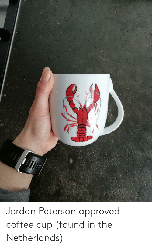 fe4ea134 Coffee, Jordan, and Netherlands: Jordan Peterson approved coffee cup (found  in the