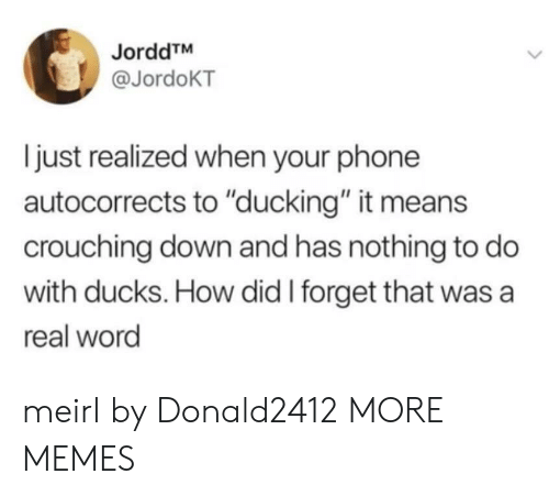 """Dank, Memes, and Phone: JorddTM  @JordoKT  just realized when your phone  autocorrects to """"ducking"""" it means  crouching down and has nothing to do  with ducks. How did I forget that was a  real word meirl by Donald2412 MORE MEMES"""