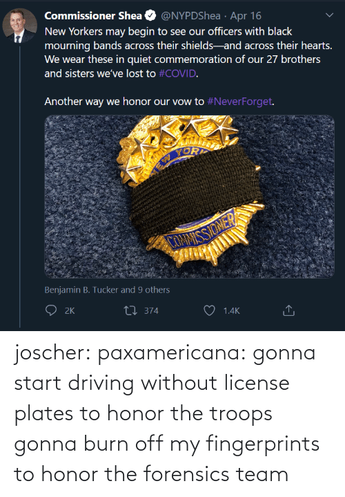 Driving, Tumblr, and Blog: joscher:  paxamericana: gonna start driving without license plates to honor the troops gonna burn off my fingerprints to honor the forensics team