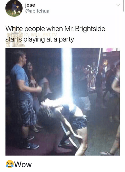 Memes, Party, and White People: jose  @abitchua  White people when Mr. Brightside  starts playing at a party 😂Wow