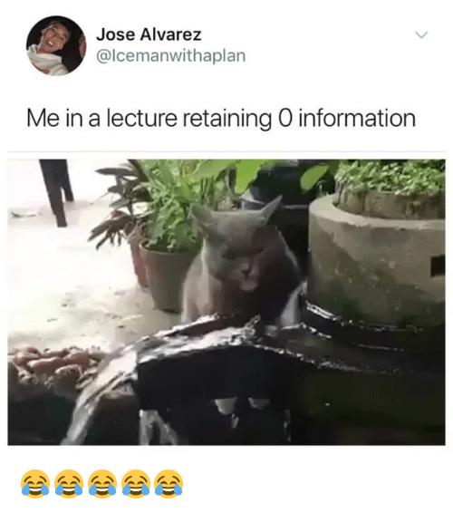 Information, Girl Memes, and Alvarez: Jose Alvarez  @lcemanwithaplan  Me in a lecture retaining O information 😂😂😂😂😂