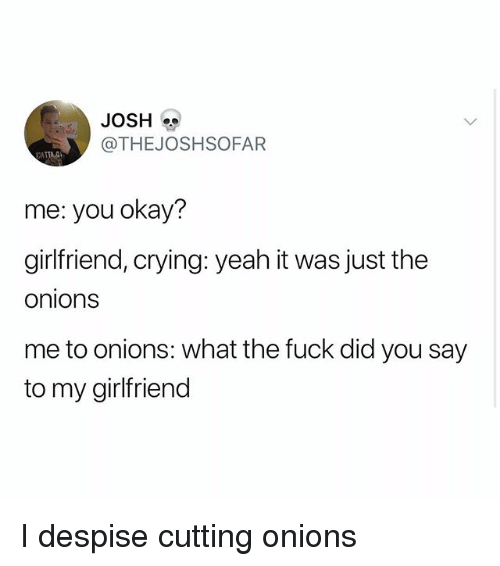 Crying, Memes, and Yeah: JOSH  @THEJOSHSOFAFR  ATTA.  me: you okay?  girlfriend, crying: yeah it was just the  onions  me to onions: what the fuck did you say  to my girlfriend I despise cutting onions