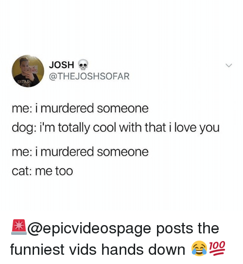 Funny, Love, and I Love You: JOSH  @THEJOSHSOFAR  me: i murdered someone  dog: i'm totally cool with that i love you  me: i murdered someone  cat: me too 🚨@epicvideospage posts the funniest vids hands down 😂💯