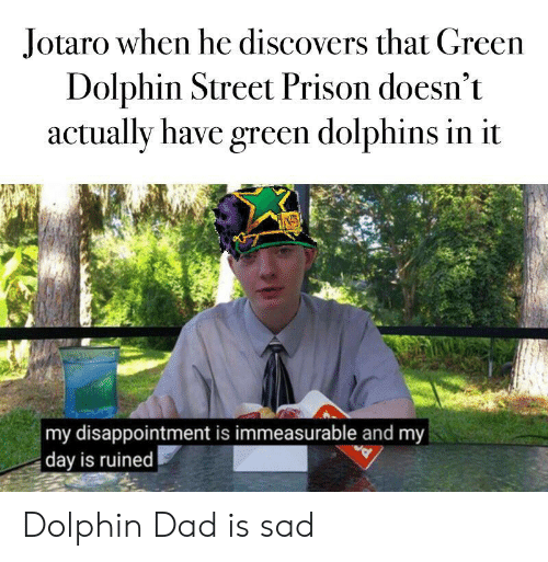 Dad, Prison, and Dolphin: Jotaro when he discovers that Green  Dolphin Street Prison doesn't  actually have green dolphins in it  my disappointment is immeasurable and my  day is ruined Dolphin Dad is sad