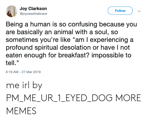 """Dank, Memes, and Target: Joy Clarkson  @joynessthebrave  Follow  Being a human is so confusing because you  are basically an animal with a soul, so  sometimes you're like """"am I experiencing a  profound spiritual desolation or have I not  eaten enough for breakfast? impossible to  tell.""""  9:19 AM-27 Mar 2019 me irl by PM_ME_UR_1_EYED_DOG MORE MEMES"""