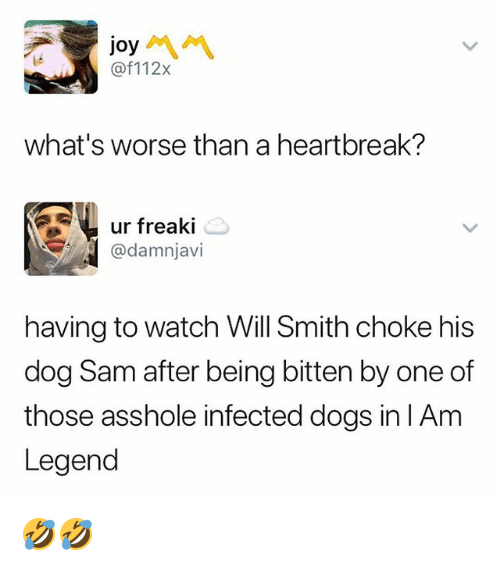 Dogs, Memes, and Will Smith: joy  @f112x  i4  what's worse than a heartbreak?  ur freaki  @damnjavi  having to watch Will Smith choke his  dog Sam after being bitten by one of  those asshole infected dogs in lAm  Legend 🤣🤣