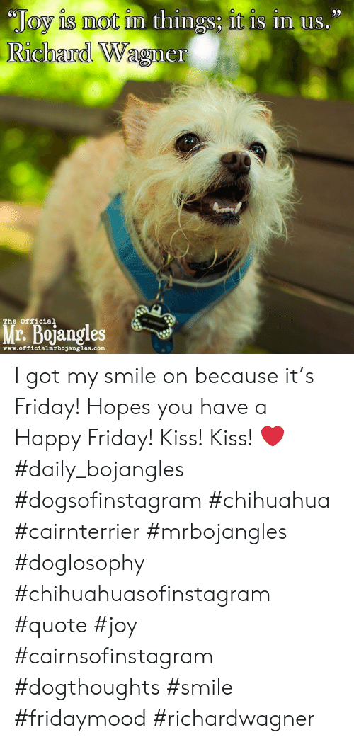 """Chihuahua, Friday, and Memes: """"Joy is mot im things; it is in us.""""  Richard Wagner  The official  r. Bojangles  www.officialmrbojangles.com I got my smile on because it's Friday! Hopes you have a Happy Friday! Kiss! Kiss! ❤️ #daily_bojangles #dogsofinstagram #chihuahua #cairnterrier #mrbojangles #doglosophy #chihuahuasofinstagram #quote #joy #cairnsofinstagram #dogthoughts #smile #fridaymood #richardwagner"""