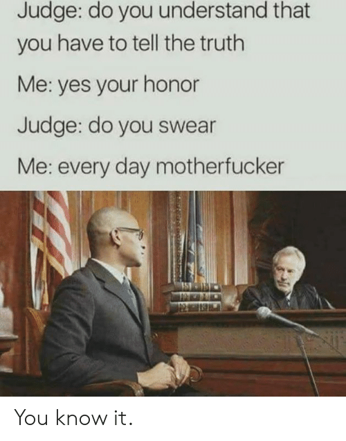 Dank, Truth, and 🤖: Judge: do you understand that  you have to tell the truth  Me: yes your honor  Judge: do you swear  Me: every day motherfucker You know it.