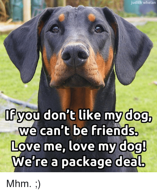 judith whelan of you dont like my dog we cant 15385586 ✅ 25 best memes about love my dogs love my dogs memes