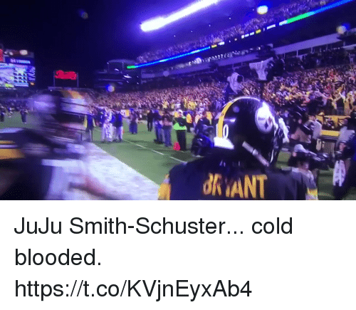 Football, Nfl, and Sports: JuJu Smith-Schuster... cold blooded.   https://t.co/KVjnEyxAb4