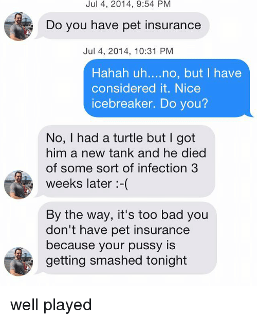 Do You Have Pet Insurance