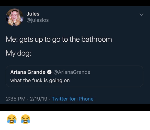 Ariana Grande, Iphone, and Twitter: Jules  @juleslos  Me: gets up to go to the bathroom  My dog  Ariana Grande @ArianaGrande  what the fuck is going on  2:35 PM. 2/19/19 Twitter for iPhone 😂 😂