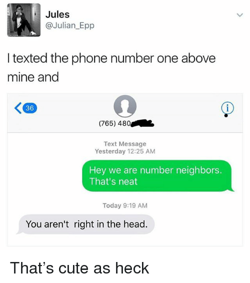 Cute, Funny, and Head: Jules  @Julian_Epp  I texted the phone number one above  mine and  36  (765) 480  Text Message  Yesterday 12:25 AM  Hey we are number neighbors.  That's neat  Today 9:19 AM  You aren't right in the head. That's cute as heck