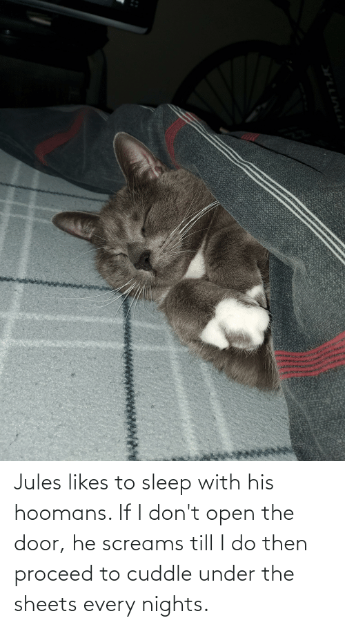 Sleep, Open, and Door: Jules likes to sleep with his hoomans. If I don't open the door, he screams till I do then proceed to cuddle under the sheets every nights.
