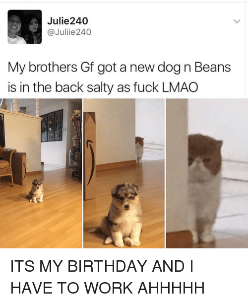 Ironic, Dog, and Working: Julie 240  @Julie 240  My brothers Gf got a new dog n Beans  is in the back salty as fuck LMAO ITS MY BIRTHDAY AND I HAVE TO WORK AHHHHH