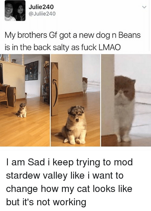Lmao, Memes, and Being Salty: Julie240  @Juliie 240  My brothers Gf got a new dog n Beans  is in the back salty as fuck LMAO I am Sad i keep trying to mod stardew valley like i want to change how my cat looks like but it's not working