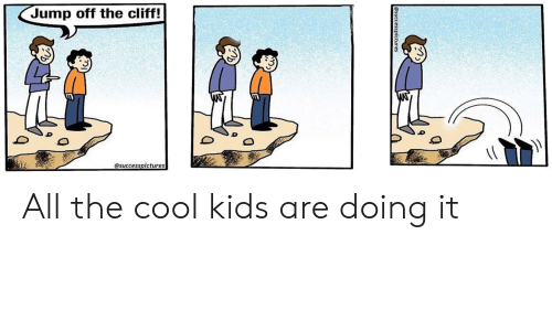 Jump Off the Cliff! All the Cool Kids Are Doing It | Cool Meme on ME ME