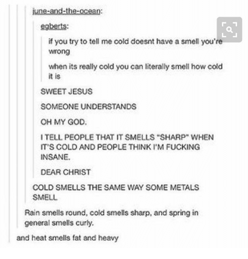 """Fucking, God, and Ironic: june-and-the-ocean:  egberts:  if you try to tell me cold doesnt have a smell you're  Wrong  when its really cold you can literally smell how cold  it is  SWEET JESUS  SOMEONE UNDERSTANDS  OH MY GOD  ITELL PEOPLE THAT IT SMELLS """"SHARP"""" WHEN  IT'S COLD AND PEOPLE THINK I'M FUCKING  INSANE.  DEAR CHRIST  COLD SMELLS THE SAME WAY SOME METALS  SMELL  Rain smells round, cold smells sharp, and spring in  general smels curly.  and heat smells fat and heavy"""