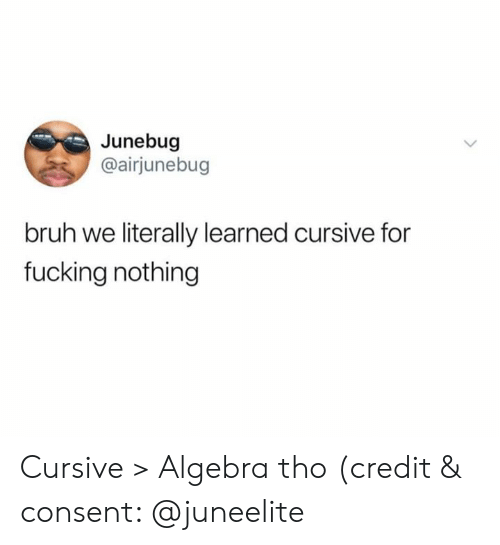 Bruh, Fucking, and Algebra: Junebug  @airjunebug  bruh we literally learned cursive for  fucking nothing Cursive > Algebra tho (credit & consent: @juneelite