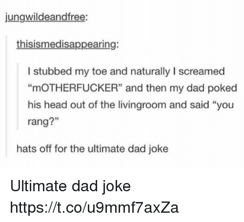 "Dad, Head, and Memes: jungwildeandfree:  thisismedisappearing:  I stubbed my toe and naturally I screamed  ""mOTHERFUCKER"" and then my dad poked  his head out of the livingroom and said ""you  rang?""  3  rang?""  hats off for the ultimate dad joke Ultimate dad joke https://t.co/u9mmf7axZa"