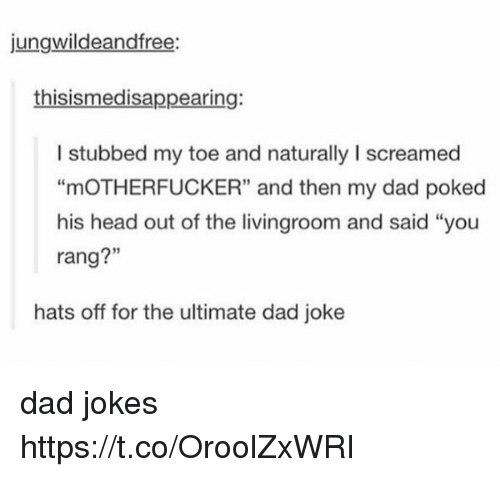 "Dad, Head, and Jokes: jungwildeandfree:  thisismedisappearing:  I stubbed my toe and naturally I screamed  ""mOTHERFUCKER"" and then my dad poked  his head out of the livingroom and said ""you  rang?""  hats off for the ultimate dad joke dad jokes https://t.co/OroolZxWRI"