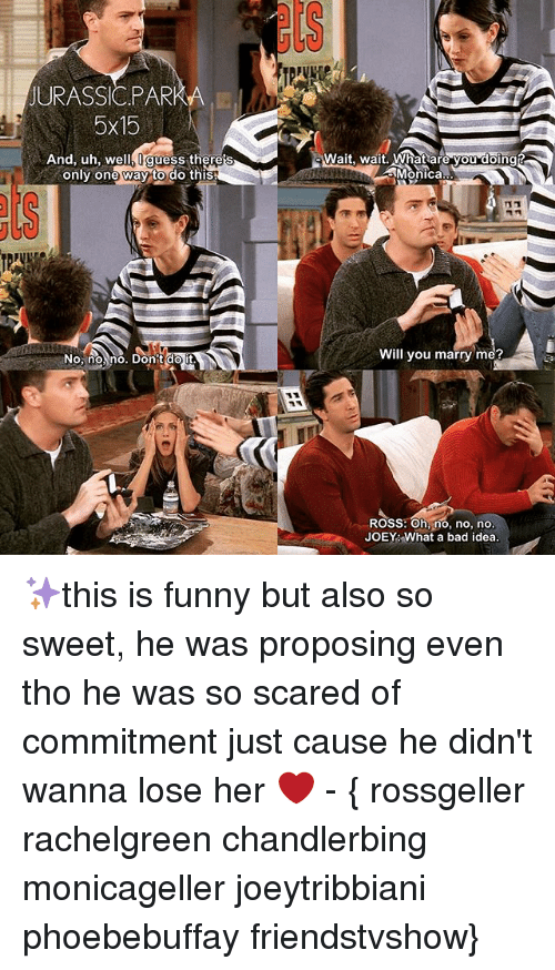 Memes, 🤖, and Idea: JURASSIC PARK  5x15  And, uh, we  guess there  only one way to do this  No, no no, Don  do it  wait, wait. What are you doing  Monica  Will you marry me?  ROSS: Oh, no, no, no  JOEY What a bad idea. ✨this is funny but also so sweet, he was proposing even tho he was so scared of commitment just cause he didn't wanna lose her ❤️ - { rossgeller rachelgreen chandlerbing monicageller joeytribbiani phoebebuffay friendstvshow}