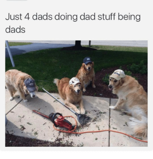 just 4 dads doing dad stuff being dads 15099520 just 4 dads doing dad stuff being dads ironic meme on me me,Dog Dad Meme
