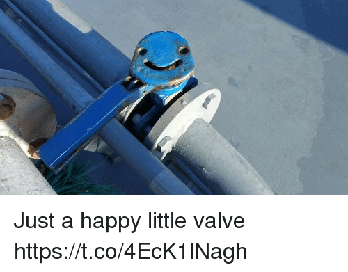 Happy, Faces-In-Things, and Valve: Just a happy little valve https://t.co/4EcK1lNagh