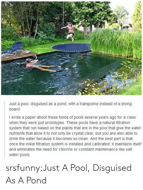 Run, Tumblr, and Best: Just a pool, disguised as a pond, with a trampoline instead of a diving  board  I wrote a paper about these kinds of pools several years ago for a class  when they were just prototypes. These pools have a natural filtration  system that run based on the plants that are in the pool that give the water  nutrients that allow it to not only be crystal clear, but you are also able to  drink the water because it becomes so clean. And the best part is that  once the initial filtration system is installed and calibrated, it maintains itself  and eliminates the need for chlorine or constant maintenance like salt  water pools srsfunny:Just A Pool, Disguised As A Pond