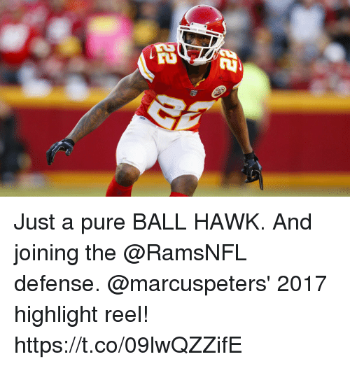 Memes, Highlight Reel, and 🤖: Just a pure BALL HAWK. And joining the @RamsNFL defense.  @marcuspeters' 2017 highlight reel! https://t.co/09lwQZZifE