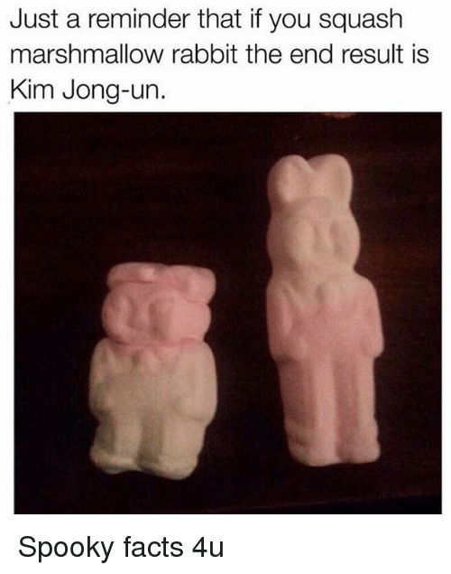 Facts, Kim Jong-Un, and Memes: Just a reminder that if you squash  marshmallow rabbit the end result is  Kim Jong-un. Spooky facts 4u