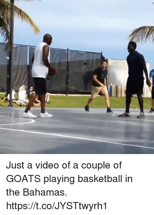 Just A Video Of A Couple Of Goats Playing Basketball In The Bahamas