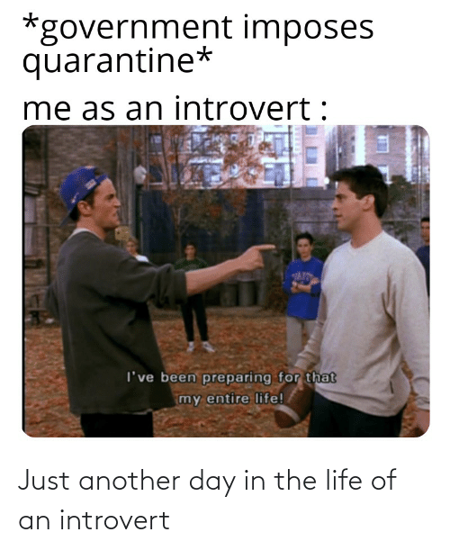 Introvert, Life, and Reddit: Just another day in the life of an introvert