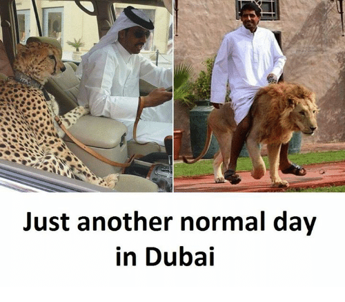 Dubai, Another, and Day: Just another normal day  in Dubai