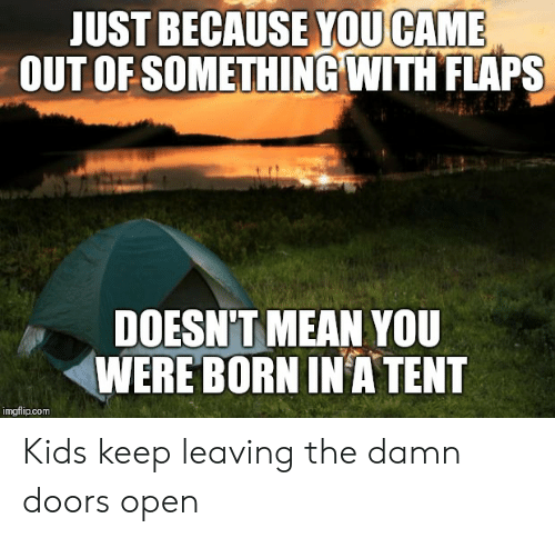 Funny, Kids, and Mean: JUST BECAUSE YOU CAME  OUT OF SOMETHING WITH FLAPS  DOESN'T MEAN YOU  WERE BORN IN A TENT  imgflip.com Kids keep leaving the damn doors open