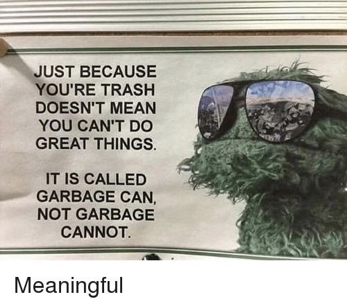 Trash, Mean, and Garbage: JUST BECAUSE  YOU'RE TRASH  DOESN'T MEAN  YOU CAN'T DC  GREAT THINGS.  IT IS CALLED  GARBAGE CAN  NOT GARBAGE  CANNOT Meaningful