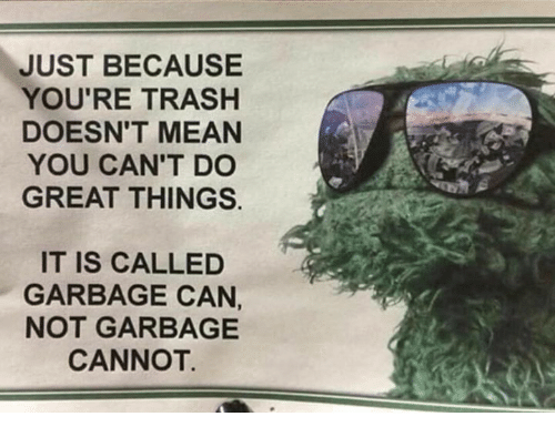 Trash, Mean, and Garbage: JUST BECAUSE  YOU'RE TRASH  DOESN'T MEAN  YOU CAN'T DO  GREAT THINGS.  IT IS CALLED  GARBAGE CAN,  NOT GARBAGE  CANNOT.
