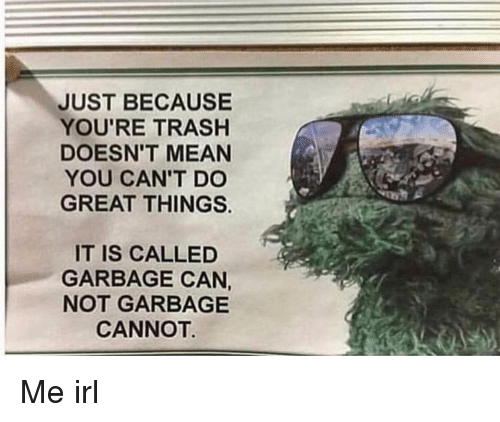 Mean, Irl, and Me IRL: JUST BECAUSE  YOU'RE TRASHH  DOESN'T MEAN  YOU CAN'T DO  GREAT THINGS.  IT IS CALLED  GARBAGE CAN,  NOT GARBAGE  CANNOT Me irl