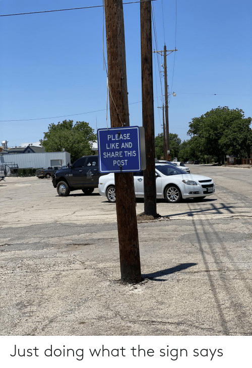 Sign, What, and Just: Just doing what the sign says